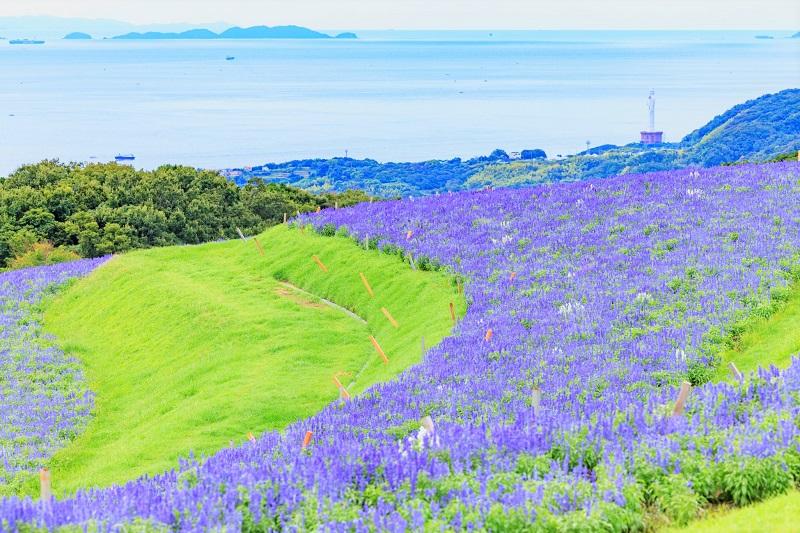 淡路島はテーマパークアイランド!週末ドライブにおすすめの観光スポット10選!