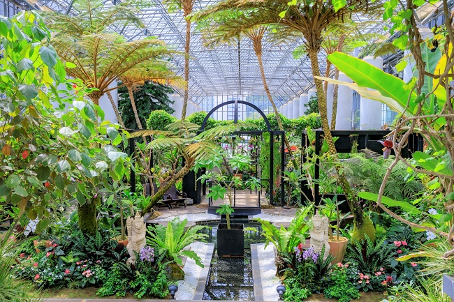 淡路島_奇跡の星の植物館