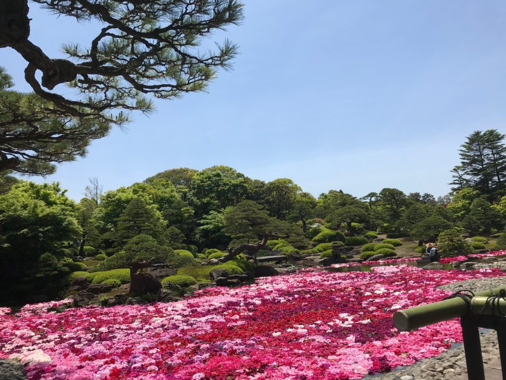 """島根・松江「大根島」は""""牡丹の里""""で有名!圧巻の日本庭園「由志園」を散策♪"""