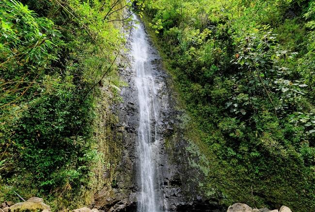 ハワイ・オアフ島_マノア渓谷_210114