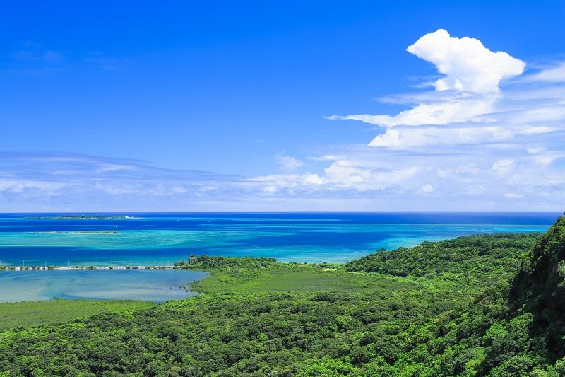"""世界遺産の候補地「西表島」。押さえておきたい""""日本最後の秘境""""の魅力"""
