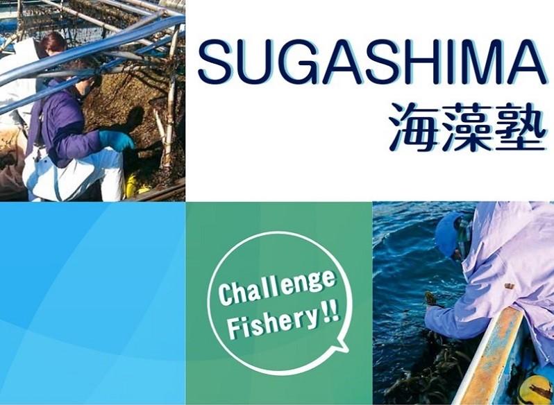 鳥羽市漁業体験型移住体験ツアー『SUGASHIMA海藻塾』の塾生を募集します!