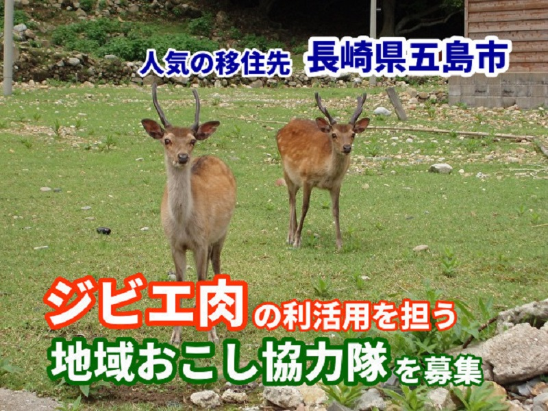 【離島の求人情報】長崎県五島市:ジビエ肉の利活用を担う地域おこし協力隊を募集中!