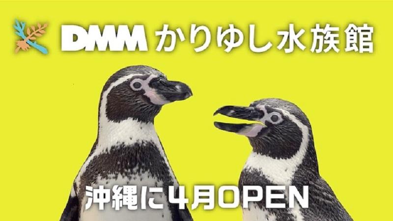 沖縄・豊見城市:「DMMかりゆし水族館」4月オープン決定!全7パターンのCM放送開始