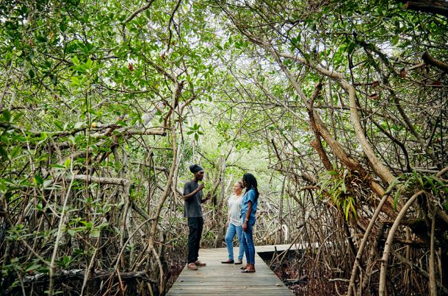バハマ_Airbnbバハマ・サバティカル