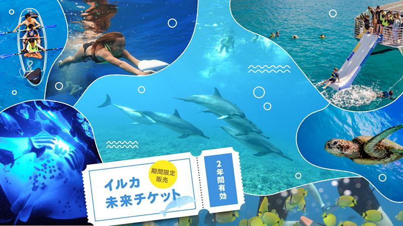 オアフ島・ハワイ島:大人気!野生イルカたちと泳げるツアー「イルカ未来チケット」