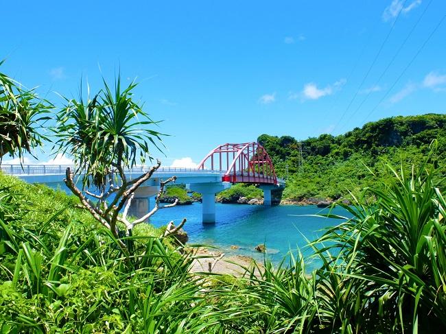 沖縄・うるま市_「くがにたまご」