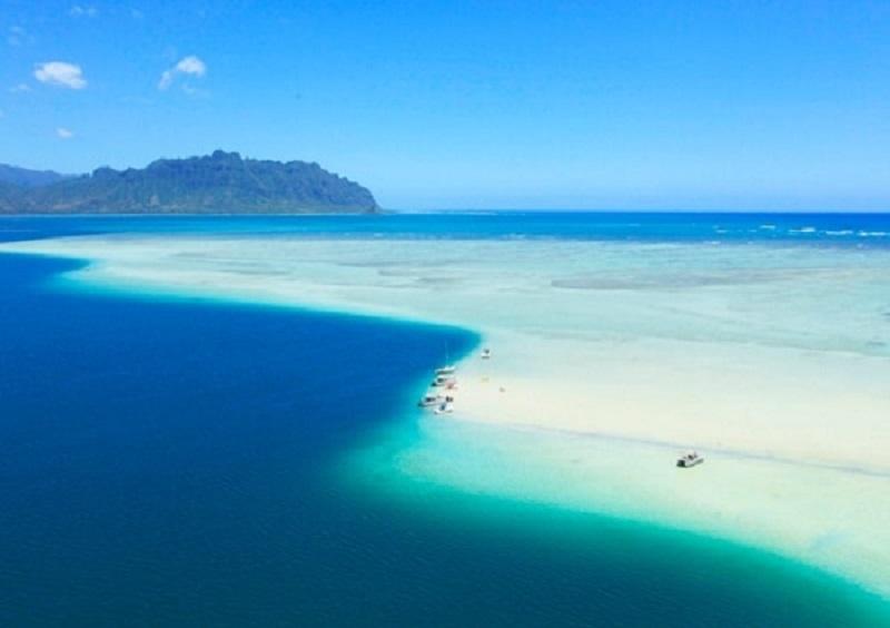オアフ島:ハワイで人気の「天国の海®」オンラインライブツアー開催