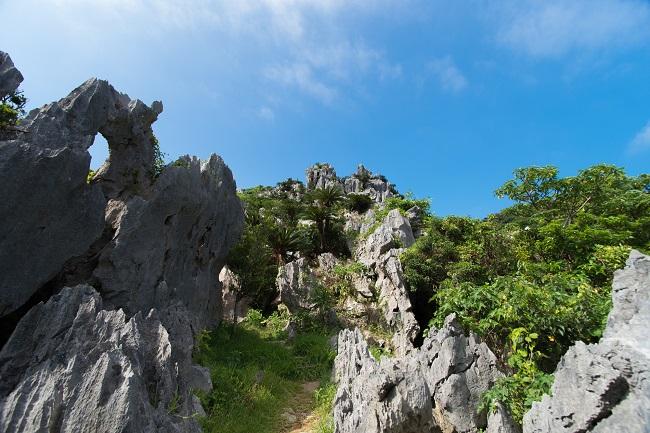 沖縄_大石林山
