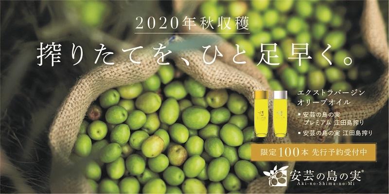江田島:2020年秋収穫の搾りたて国産エクストラバージンオリーブオイル先行予約受付中
