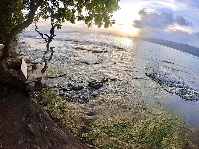 ハワイ・オアフ島_A09_201013