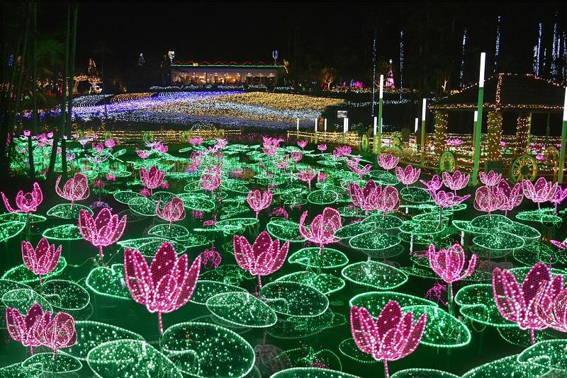 沖縄・沖縄市:東南植物楽園「ひかりの散歩道2020-2021」南国イルミネーション開催