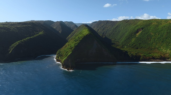 ハワイ島_ネスレネスプレッソ㈱「ハワイ・コナ」