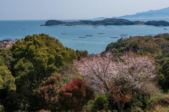 頭島_たぬき山展望台_201113