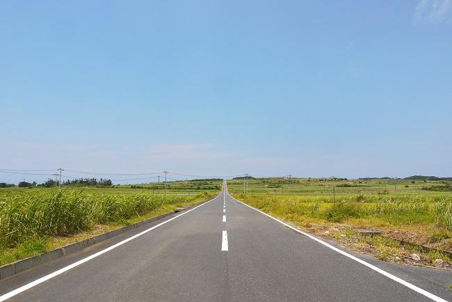 喜界島_サトウキビ畑の一本道_201113