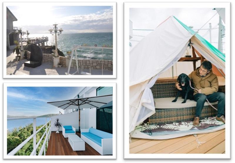 淡路島:270°オーシャンビューの愛犬と宿泊できるグランピング施設オープン