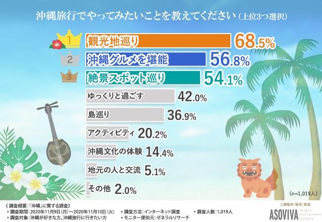 沖縄_ASOVIVA_インターネット調査