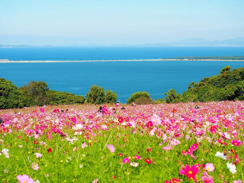 福岡市から10分で行ける島旅♪ぐるっと「能古島」を満喫!