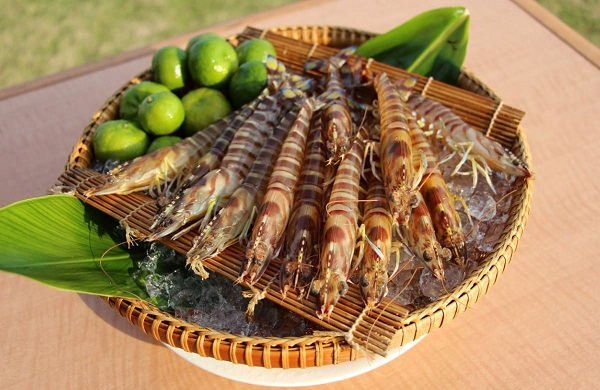 沖縄・久米島_「久米島漁業満祭」
