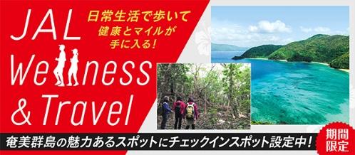 奄美群島_JALオンライントリップ「奄美群島への新しい旅のカタチ」