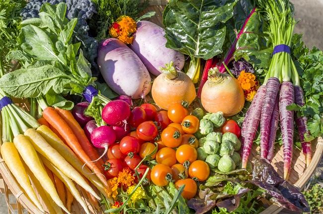 淡路島_CANDLE TABLE「香るハーブと彩り野菜」