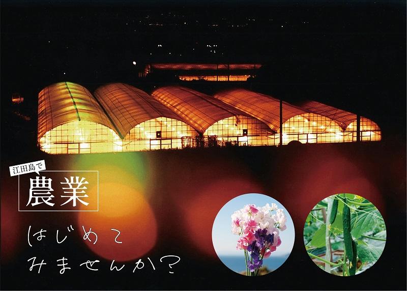 江田島:「農業」という選択は、やる気次第!令和3年8月採用 新規就農研修生を募集