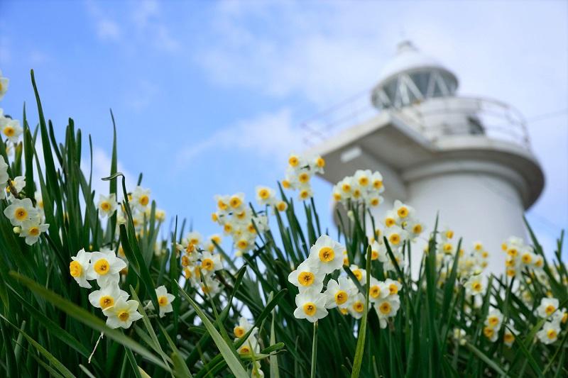 """フェリーで行く岡山県「六島」。""""水仙と灯台の島""""だけじゃない見どころを紹介!"""