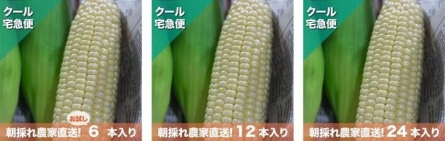 沖縄・中城村_松島農園「汐風パール」