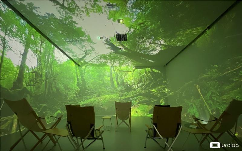 屋久島を北海道で体験!樹齢1000年超の古樹に感動『屋久島の旅〜縄文杉・苔むす森』