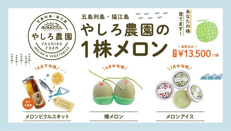 福江島:五島の椿や海水で作った「椿メロン」100株限定販売スタート!
