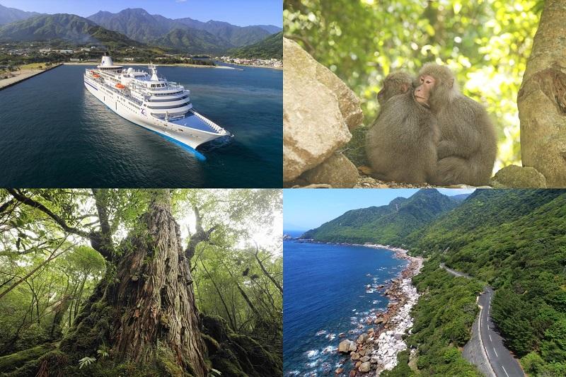 屋久島:客船「ぱしふぃっく びいなす」大阪、神戸、広島、北九州からクルーズ!