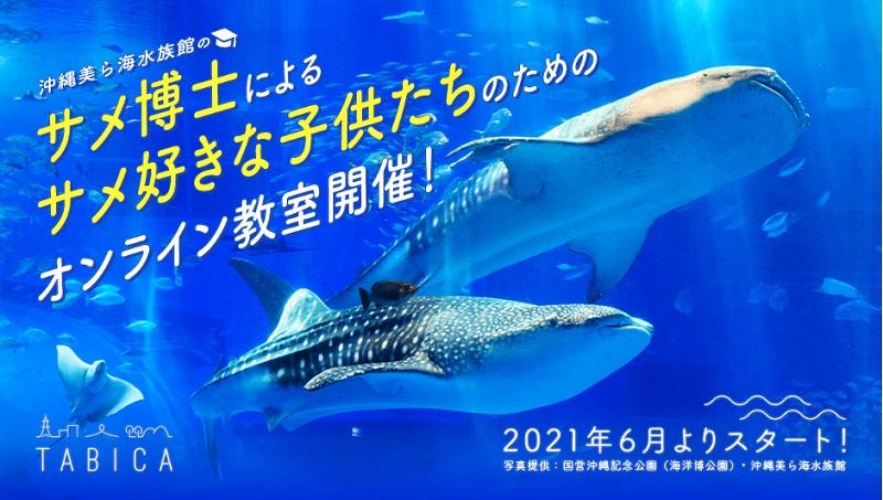 沖縄美ら海水族館のサメ博士らとオンラインで「美ら海サメ博士教室」6/26開講!