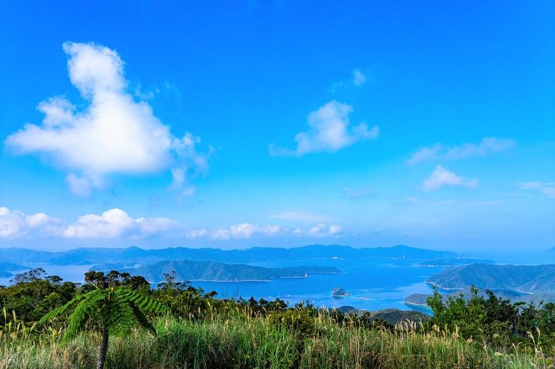 世界遺産登録へ!【奄美大島、徳之島、沖縄島北部及び西表島】が丸わかり♪