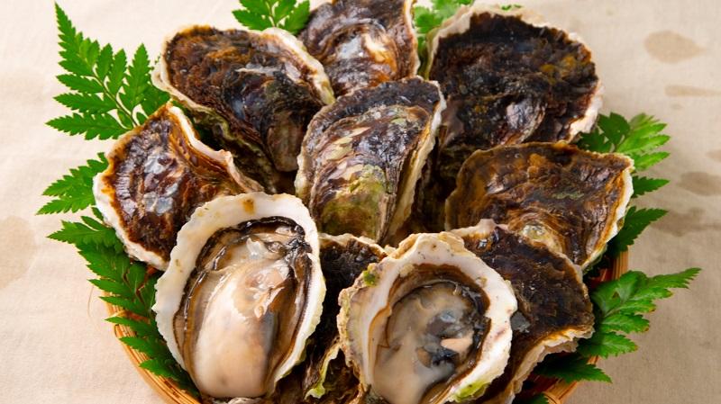 五島列島・新上五島町:超貴重な超極濃&超特大プレミアム岩牡蠣をご自宅にお届け!