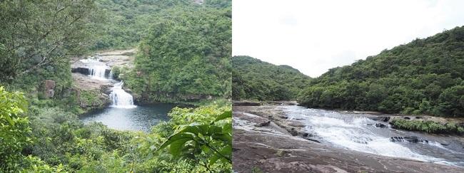 西表島_マリユドゥの滝、カンピレーの滝_A01