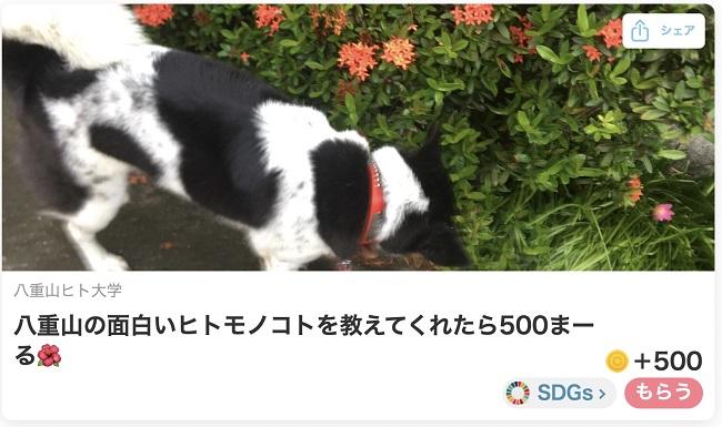 沖縄・石垣島_コミュニティ通貨「まちのコイン(まーる)」