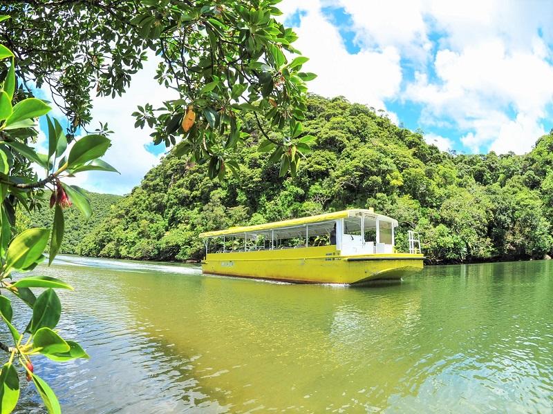 【浦内川観光】世界自然遺産の島・西表島で大自然を満喫ツアー