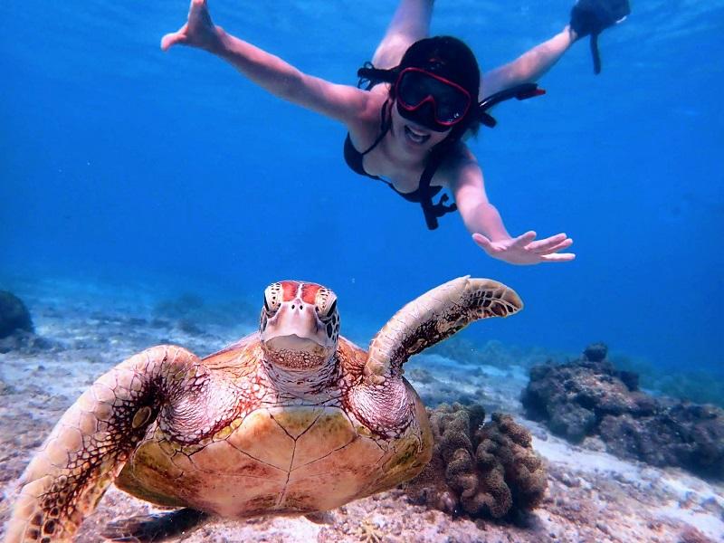 【ハーミットクラブ】宮古島を満喫するシュノーケル&SUPツアー